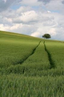 Agriculture et démographie : regards croisés