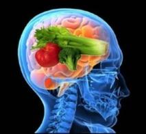 La Brain Food parle à votre cerveau