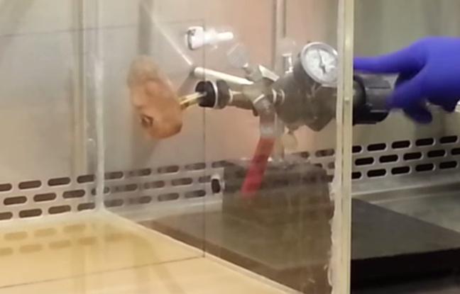 Le robot qui vomit