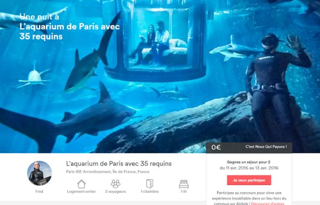 Airbnb, pour les mordus des requins