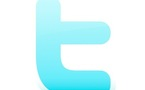Les erreurs communes sur Twitter