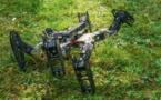 Le robot qui se dépanne
