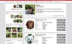 Chien-Chien a son réseau social